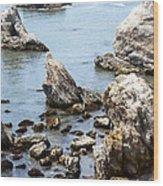 Shell Beach Rocky Coastline Wood Print