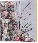 Shell Bouquet  No 6 Wood Print
