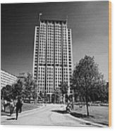 shell centre tower and jubilee gardens southbank London England UK Wood Print
