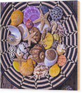 Shell Collecting Wood Print by Garry Gay