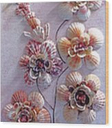 Shell Flowers  No 1  Wood Print