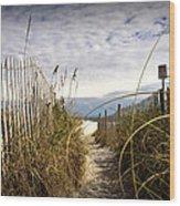 Shell Island Beach Access Wood Print