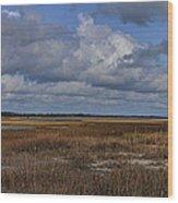 Shell Island To Figure Eight Panorama Wood Print