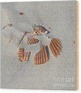 Shell Jigsaw Wood Print