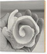 Shell On Cozumel Wood Print