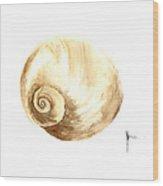 Shell Painting Watercolor Art Print Wood Print