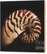 Shell Pose  Wood Print