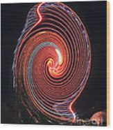 Shell Swirl Wood Print