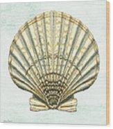 Shell Treasure-a Wood Print