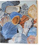 Shells On The Beach Wood Print