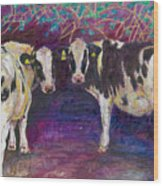 Sheltering Cows Wood Print