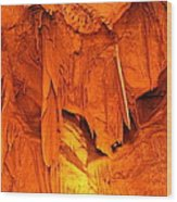 Shenandoah Caverns - 121266 Wood Print by DC Photographer