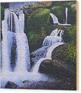 Shenandoah Valley Falls Wood Print