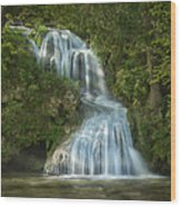 Shenandoah Waterfall Wood Print