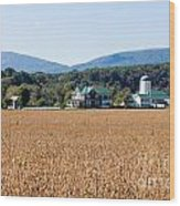 Shenandoah Valley Farmstead Wood Print