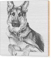 Shepherd Dog Pencil Portrait Wood Print
