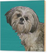 Shih Tzu On Turquoise Wood Print