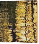Shimmer Wood Print