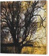 Shine In Twine  Wood Print