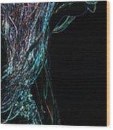 Shining Lady Wood Print by Jenny Rainbow