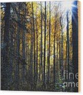 Shining Through Wood Print