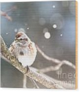 Shiny Tree Sparrow Wood Print