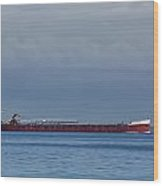 Ship On Lake Huron 1 Wood Print