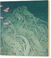 Fish And Motorbikes Wood Print
