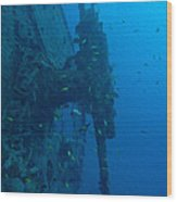 Small Artillery On A Ship Wreck Wood Print