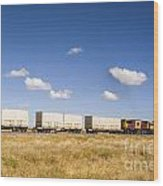 Shipping Containers On The Move By Train Wood Print by Colin and Linda McKie