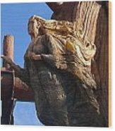 Ship's Figurehead Wood Print