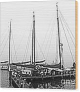 Ships Of Volendram Wood Print