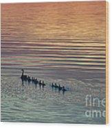 Shipshewana Lake Evening Wood Print