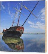 Shipwreck In Lake Ontario  Ontario Wood Print