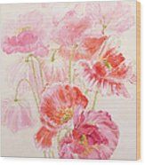 Shirley Poppies Wood Print