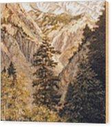 Shirley Temple Mine Wood Print