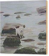Shirley's Dog Wood Print