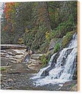 Shoal Creek Area Waterfalls Wood Print