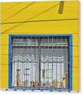 Shop Window - Mexico - Photograph By David Perry Lawrence Wood Print