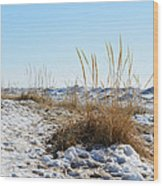 Shore And Ice Wood Print