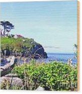 Shore Walking Wood Print