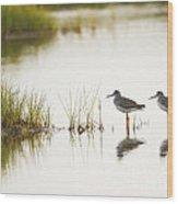 Shorebirds At Dusk Wood Print