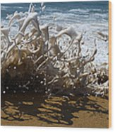 Shorebreak - The Wedge Wood Print