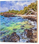 Shoreline At Puako Wood Print