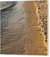 Shoreline Wood Print by BandC  Photography