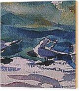 Shoreline Birds Iv Wood Print