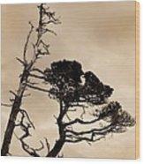 Shoreline Struggle Wood Print