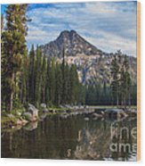 Shoreline View Of Anthony Lake Wood Print