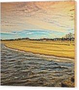Shores Of Lake Michigan Wood Print