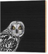 Short-eared Owl Wood Print